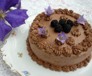 Brombeer-Schoko-Torte